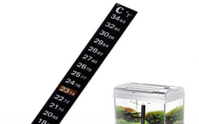 How to read a fish tank thermometer strip?
